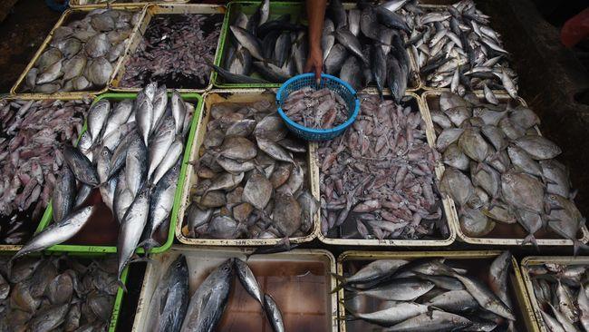 Pemerintah Rancang Peta Jalan Dongkrak Produksi Perikanan