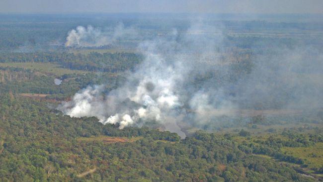 Aktivis Pertimbangkan Praperadilan SP3 Kasus Kebakaran Hutan