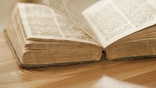 Mengapa Aroma Buku Tua Begitu Menyenangkan?