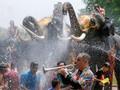Kawanan Gajah Meriahkan Festival Songkran di Thailand