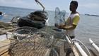 Pemerintah Finalisasi Pencairan Kredit Bagi Nelayan