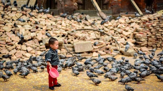 Seorang anak berdiri sehabis memberi makan sekumpulan burung merpati di pelataran Kuil Jagannath yang dipenuhi batu bata dari reruntuhan bencana gempa bumi di kawasan Durbar Square, Kathmandu. (Reynold Sumayku)