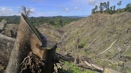Adu Ide Penyelamatan Lingkungan ala PBB dan Covestro