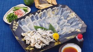 Ikan Fugu Lebih Beracun Dibanding Sianida