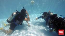Bujet Khusus untuk Berkenalan dengan Kehidupan Bawah Laut