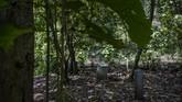 Batu nisan yang dibangun berada di bawah rimbun pohon jati di Hutan Plumbon. Daerah ini masuk kawasan kelurahan Wonosari, Kecamatan Mangkang, Semarang, Jawa Tengah.(Getty Images/Ulet Ifansasti)