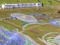 Menikmati Lukisan Van Gogh Raksasa di Negeri Topan