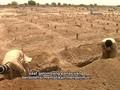 Hadapi Gelombang Panas, Pakistan Gali Kuburan Massal