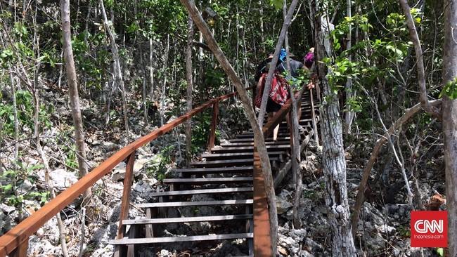 Ratusan anak tangga kayu menuju puncak salah satu bukit di Piaynemo, yang merupakan salah satu 'atap' Raja Ampat, dimana turis bisa melihat keindahan alam dari atas.