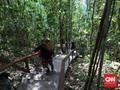 Menjelajahi Alam Papua Barat