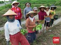 Industri Tembakau Akui Ketidakadilan atas Petani