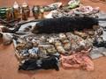 Thailand Dakwa 22 Orang terkait Perdagangan Satwa Liar