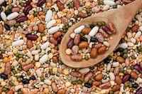 Makan kacang-kacangan juga dapat meningkatkan kekuatan tubuh dan energi setelah berolahraga. Pasalnya, kacang-kacangan memiliki sepaket nutrisi yang mengandung protein, karbohidrat, viyamin, antioksidan, dan kalsium. Foto: iStock/FAO Indonesia