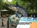 Pameran Sampah Plastik untuk Kampanye Lingkungan
