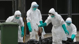 10 Virus Paling Mematikan di Dunia