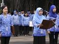 Pemerintah Buka Hampir 18 Ribu Lowongan CPNS di 61 Instansi