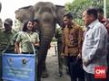 Buka Pekan Lingkungan Hidup, JK Disambut Dua Gajah