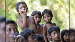 Populasi Orang Rimba Terancam, Komnas HAM Turun Tangan