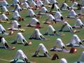 Mengenal Gerak Yoga Yang Aman Dilatih Selama Berpuasa