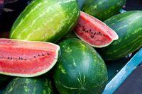 Ini hal yang penting, jangan sampai pria tidak menyukai semangka. Pria yang menyukai buah semangka memiliki manfaat yang cukup baik. Semangka salah satu sumber terbaik asam amino yang membantu fungsi seksual membaik. Kadar oksida nitrat dalam tubuh akan mengobati disfungsi ereksi. Foto: Thinkstock