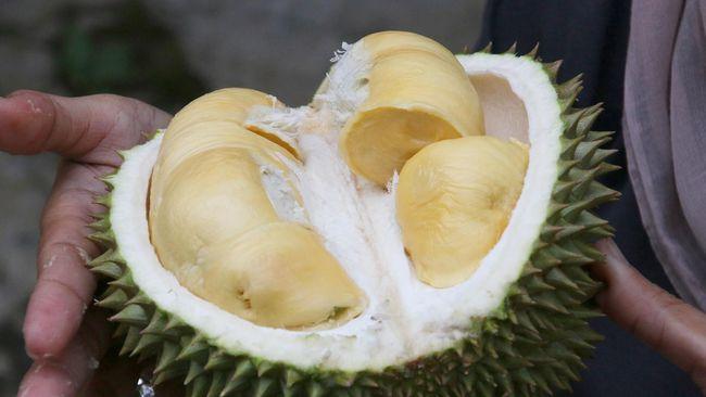 Menu Durian Musang King Berlapis Emas 24 Karat Di Singapura