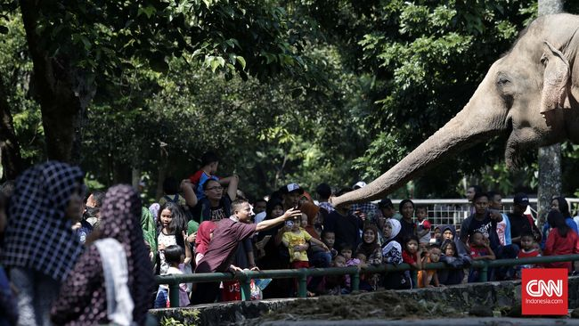 Bonbin Ragunan, Wisata Favorit Keluarga