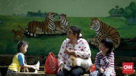 Libur Lebaran, Sampah Berserakan di Kebun Binatang Ragunan