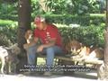 Tips Merawat Anjing saat Musim Panas Tiba