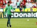 Ngengat 'Berpesta' di Final Piala Eropa 2016