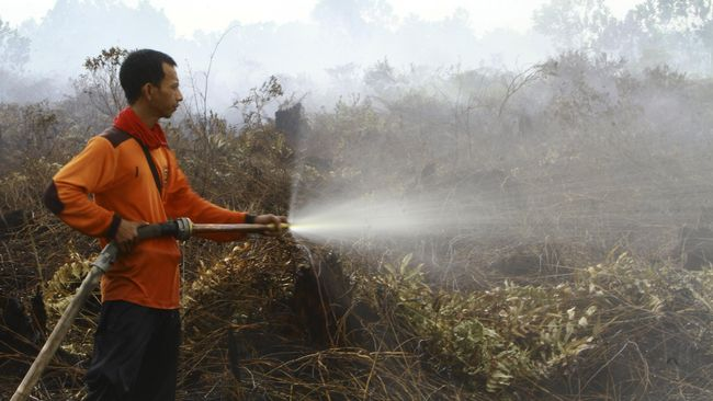 Jumlah Titik Api di Indonesia Berkurang 74,21 Persen