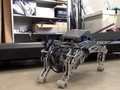 Peneliti Jepang Bikin Robot 'Anjing Chihuahua'