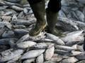 AS Puji Indonesia soal Pemberantasan Pencurian Ikan