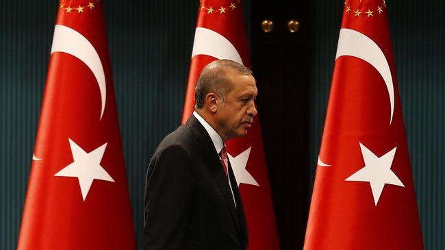 Erdogan Dianggap Tidak Membawa Solusi bagi Krisis Qatar
