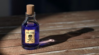 Penjahat Perang Bosnia Bunuh Diri Minum Racun di Ruang Sidang