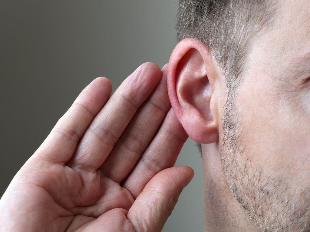 Infografis: Seberapa Bising Sih Suara di Sekitar Kita?
