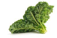 Kale, sayuran yang masih awam di kalangan masyarakat ini kaya akan vitamin E dan antioksidan sebagai penguat kekebalan tubuh dengan meningkatkan sel darah putih untuk membunuh bakteri. Foto: iStock/The Guardian