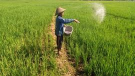 Subsidi Pupuk, Kelompok Tani Minta Kartu Tani Segera Dicetak