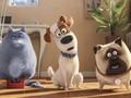 Lima Rekomendasi Film Akhir Pekan