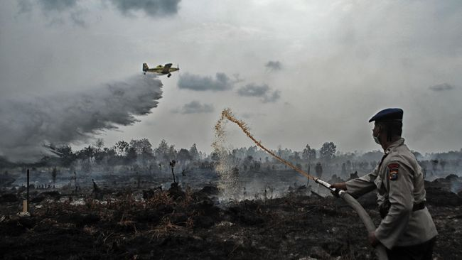 SP3 Polda Riau, Ahli Tegaskan Api Muncul dari Konsesi