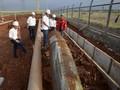 Pemerintah Akan Turunkan Iuran Biaya Distribusi Gas