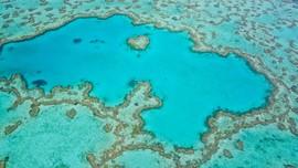 Ada Karang Besar Tersembunyi di Balik Great Barrier Reef