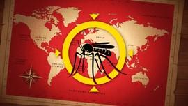 Peta Sebaran Infeksi Virus Zika