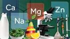 Mineral-mineral Penting untuk Daya Tahan Tubuh