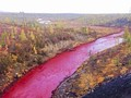 Sungai di Rusia Berubah Warna Jadi Merah Darah