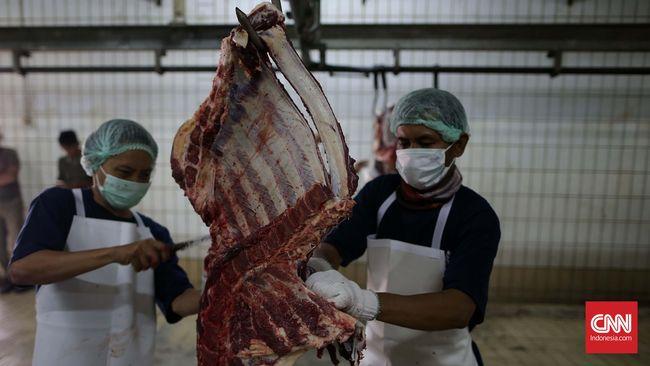 Kemendag Minta Kementan Bertolak ke Brazil Tinjau Daging Sapi