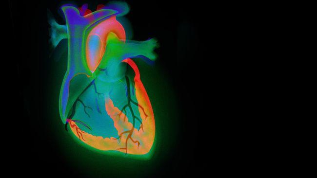 Studi Baru Mendapati Merokok Lemahkan Gen Pelindung arteri