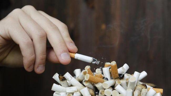 Merokok Juga Bisa Picu 'Pikun' Dini