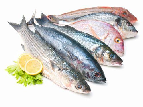 Amankah Memakan Ikan Kemasan Kaleng Setiap Hari?