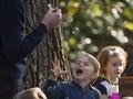 Pelesir Keluarga Kecil Pangeran William di Kanada