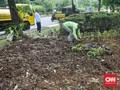 Taman Balai Kota Jakarta Rusak, Ahok Maafkan Pendemo